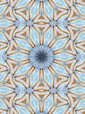 Pattern and Optics by Ricki Mountain