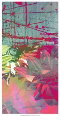 Pink Wonders II by Ricki Mountain