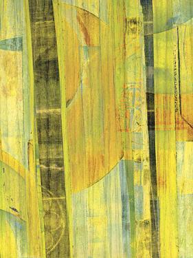 Yellow Mix II by Ricki Mountain
