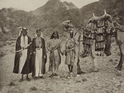 Riding camel of Sharif Yahya, 1889