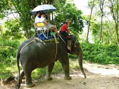 https://imgc.allpostersimages.com/img/posters/riding-elephants-in-the-chalong-highlands-phuket-thailand-southeast-asia-asia_u-L-P91TGV0.jpg?p=0
