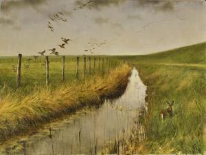 _WDH8951 by Rien Poortvliet