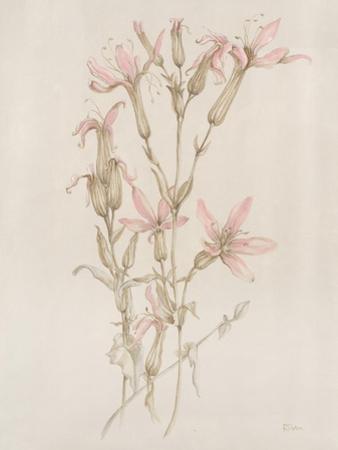 Botanicals I by Rikki Drotar