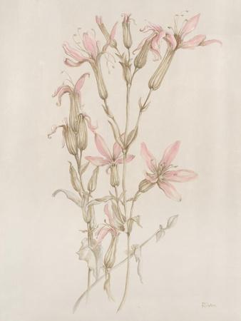 Botanicals I