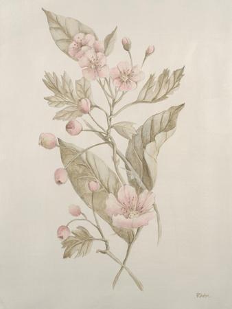 Botanicals IV