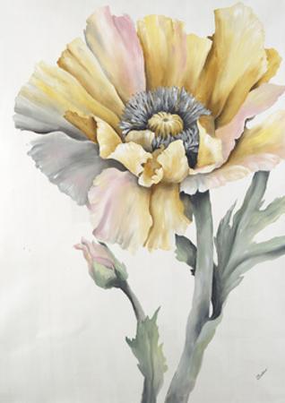 In Full Bloom I by Rikki Drotar