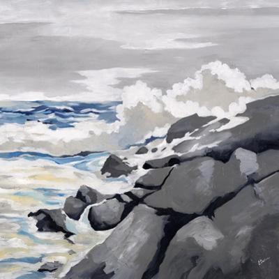Mid-Morning Coast by Rikki Drotar