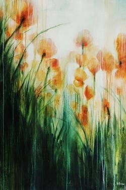 Water Color Poppy Feild by Rikki Drotar