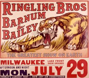 Ringling Brothers: Tiger