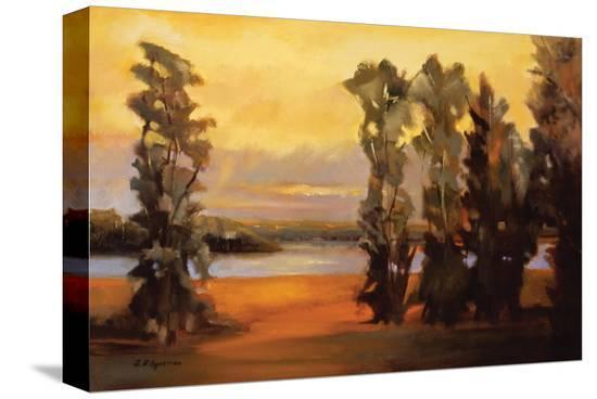 Rio Grande River I-Judith D'Agostino-Stretched Canvas Print