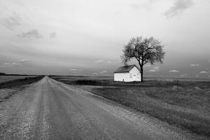 White Barn in Remote Rural Location by Rip Smith