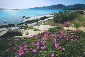 Riso beach, Villasimius, Sardinia, Italy