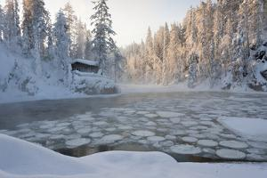 Hut near Pond in Winter Forest by Risto0
