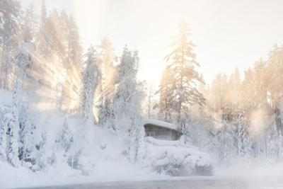 Hut near Water and Misty Forest in Winter by Risto0