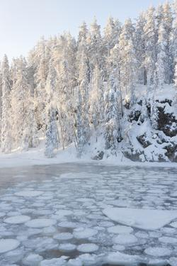 Icy Water in Snowy Forest by Risto0