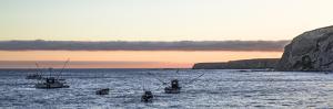 Fishing Boats IV by Rita Crane