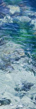 Tide Pool IV by Rita Crane