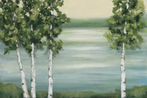 Quiet Lake by Rita Vindedzis
