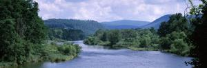 River Flowing Through a Forest, Delaware River, Delaware County, New York State, USA