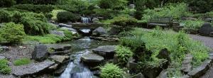 River Flowing Through a Forest, Inniswood Metro Gardens, Columbus, Ohio, USA
