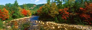 River Flowing Through a Forest, Swift River, White Mountain National Forest, Carroll County