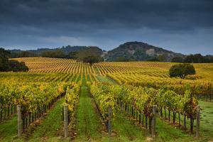 Alexander Valley by RMB Images / Photography by Robert Bowman