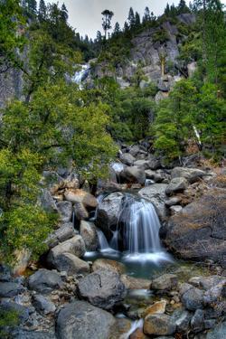 Yosemite Roadside Treasures by RMB Images / Photography by Robert Bowman