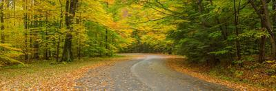 Road passing through a park, Chestnut Ridge County Park, Orchard Park, Erie County, New York Sta...