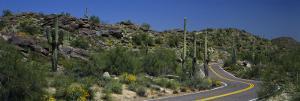 Road Through the Desert, Phoenix, Arizona, USA