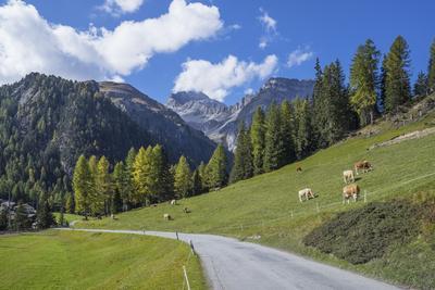 https://imgc.allpostersimages.com/img/posters/road-to-albula-pass-graubunden-swiss-alps-switzerland-europe_u-L-PWFH1R0.jpg?p=0