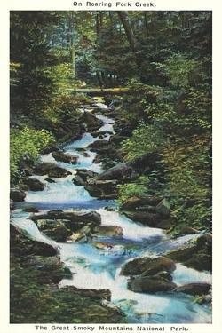 Roaring Fork Creek, The Great Smoky Mountains National Park