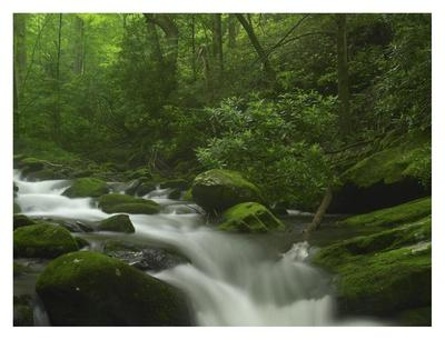 https://imgc.allpostersimages.com/img/posters/roaring-fork-river-flowing-through-the-great-smoky-mountains-national-park-tennessee_u-L-F7IBKY0.jpg?p=0