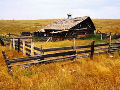 Old Barn in Field by Rob Blakers