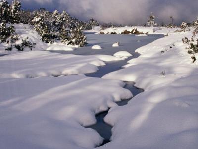 Snow on Franklin River, Cradle Mountains, Lake St. Clair National Park, Tasmania, Australia by Rob Blakers