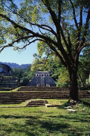 Ancient Mayan Temple, Palenque, Chiapas, Mexico