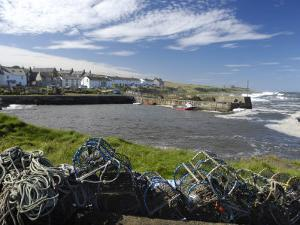 Craster Harbour, Northumberland, England, United Kingdom, Europe by Rob Cousins
