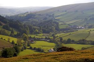 Landscape in Powys, Wales, United Kingdom, Europe by Rob Cousins