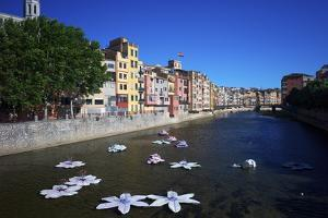 River Onyar During the Flower Festival, Girona, Catalonia, Spain by Rob Cousins