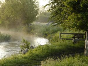 River Windrush Near Burford, Oxfordshire, the Cotswolds, England, United Kingdom, Europe by Rob Cousins