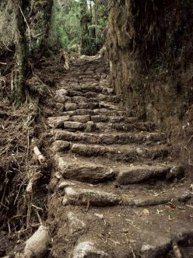 Steps on the Inca Trail, Peru, South America by Rob Cousins