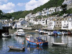 The Harbour, Polperro, Cornwall, England, United Kingdom by Rob Cousins