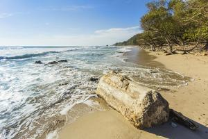 Driftwood on This Beautiful Surf Beach Near Mal Pais, Playa Santa Teresa, Costa Rica by Rob Francis