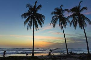 Palm Trees at Sunset on Playa Guiones Surf Beach at Sunset by Rob Francis