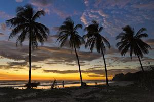 Palm Trees at Sunset on Playa Guiones Surfing Beach by Rob Francis