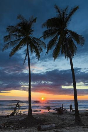 Surfer and Palm Trees at Sunset on Playa Guiones Surf Beach at Sunset