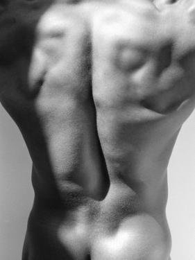 Muscular Shot of Male Back by Rob Lang