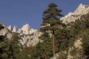 Mt. Whitney, Eastern Sierras, Lone Pine, California by Rob Sheppard