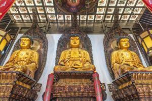 China, Shanghai. Jade Buddha Temple. by Rob Tilley
