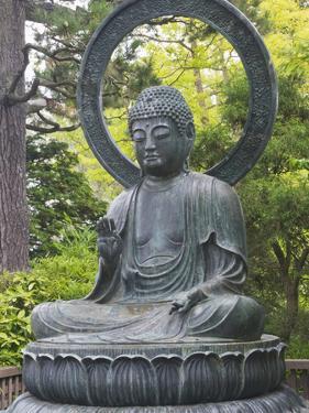 Japanese Tea Garden, Golden Gate Park, San Francisco, California, Usa by Rob Tilley
