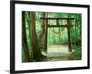 Mountain Shrine, Yakushima, Kagoshima, Japan by Rob Tilley